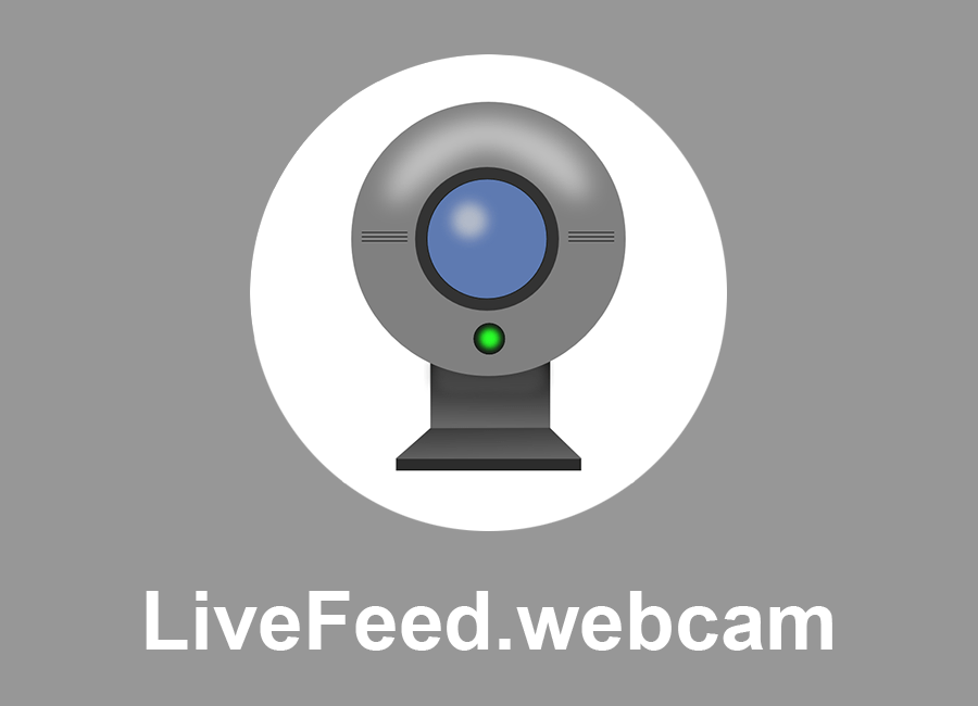 livefeed-webcam-live-feed